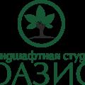"""Ландшафтная студия""""ОАЗИС"""""""